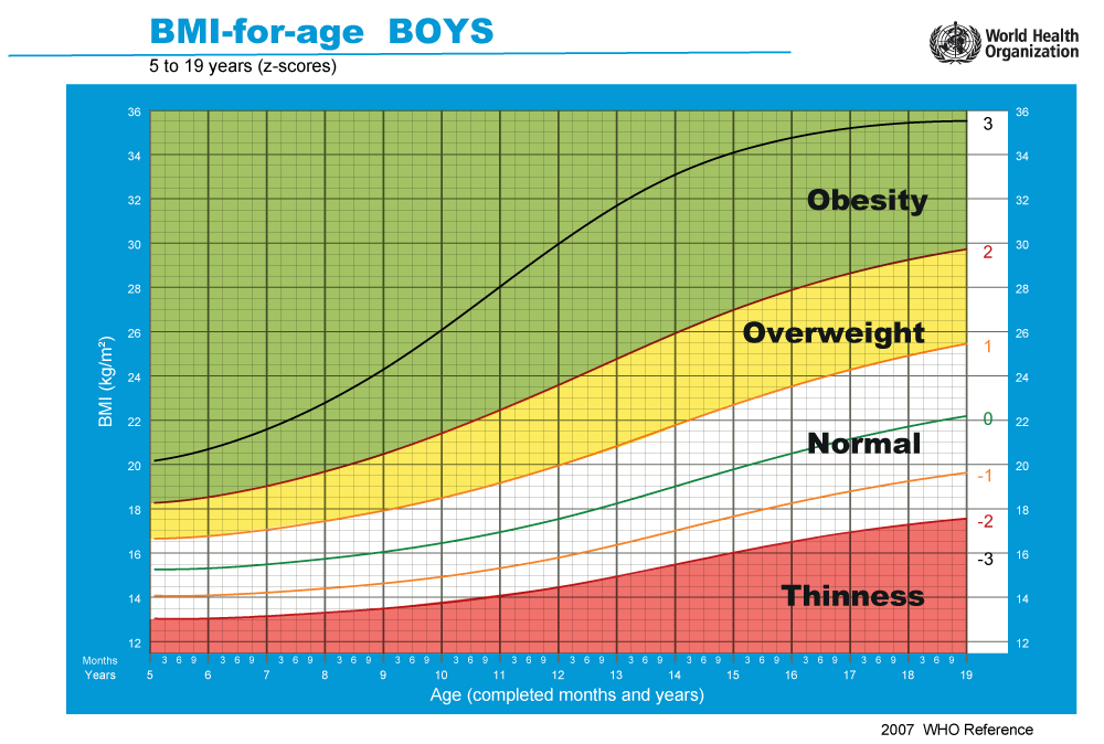 overweight and obesity from infant to Obesity is a medical condition in which excess body fat has accumulated to the extent that it may have a negative effect on health people are generally considered obese when their body mass index (bmi), a measurement obtained by dividing a person's weight by the square of the person's height, is over 30 kg/m 2, with the range 25-30 kg/m 2 defined as overweight.