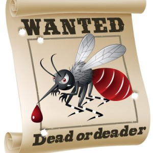 wanted-mosquito