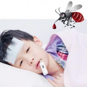 dengue-danger