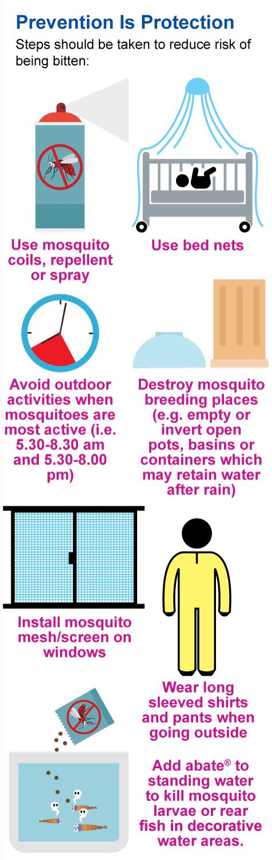 dengue-protection