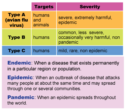 types-of-flu