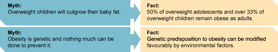 myth-and-facts-obesity