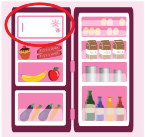 breast-milk-freezer